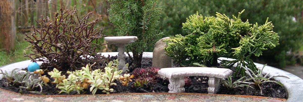 Miniature Garden Plants