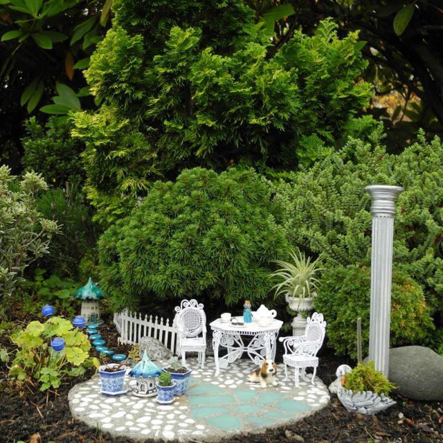 Blue & White Miniature Garden