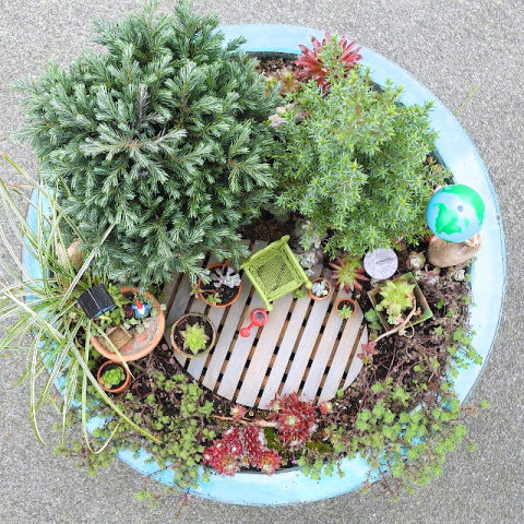 Earth Day in the Miniature Garden