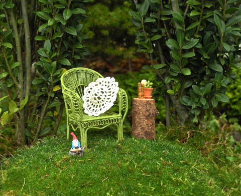 Planting Miniature Gardens Under Existing Trees