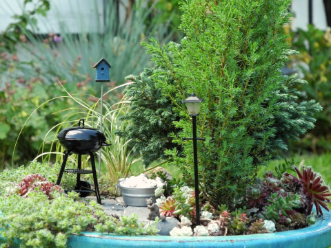 Father's Day in the Miniature Garden