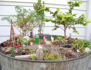 Miniature Farm Garden