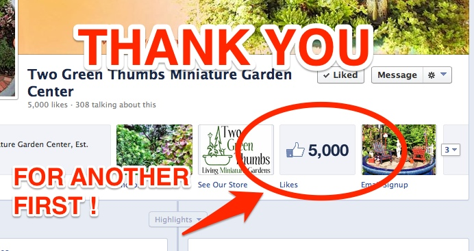 Over 5000 Likes on Facebook!