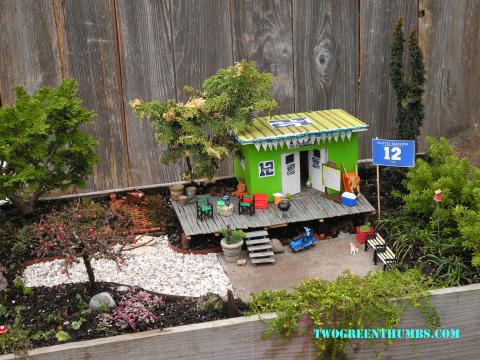 Miniature Football Gardening