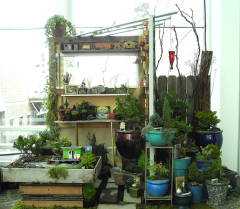Miniature gardening at the NWFGS