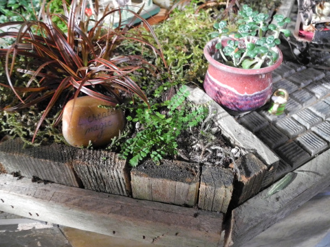The Art of Upcycling at the NWFGS