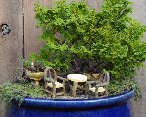 Fairy Gardening with Plow and Hearth