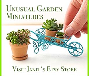 Unique and unusual miniature garden accessories, kits, plants and more.