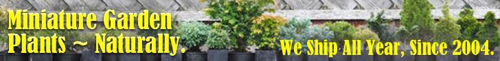 AdS-leaderboard-Plants