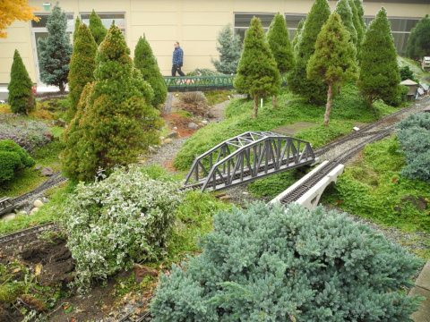 Miniature and dwarf trees for railroad gardening