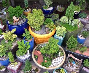 Living Miniature Gardens