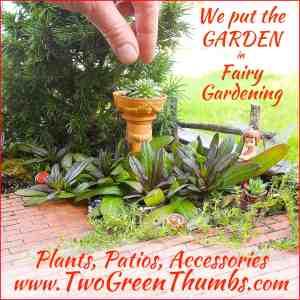 Ad-GardeninFairyGarden
