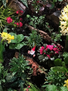 At the Northwest Flower and Garden Show