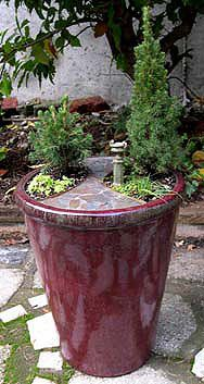 Miniature Gardening in Large Pots