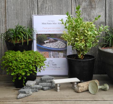 Gardening in Miniature with Janit Calvo