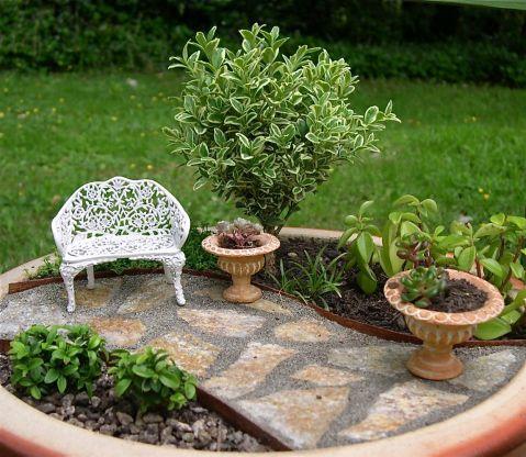 More About Indoor Miniature Gardening + Gallery
