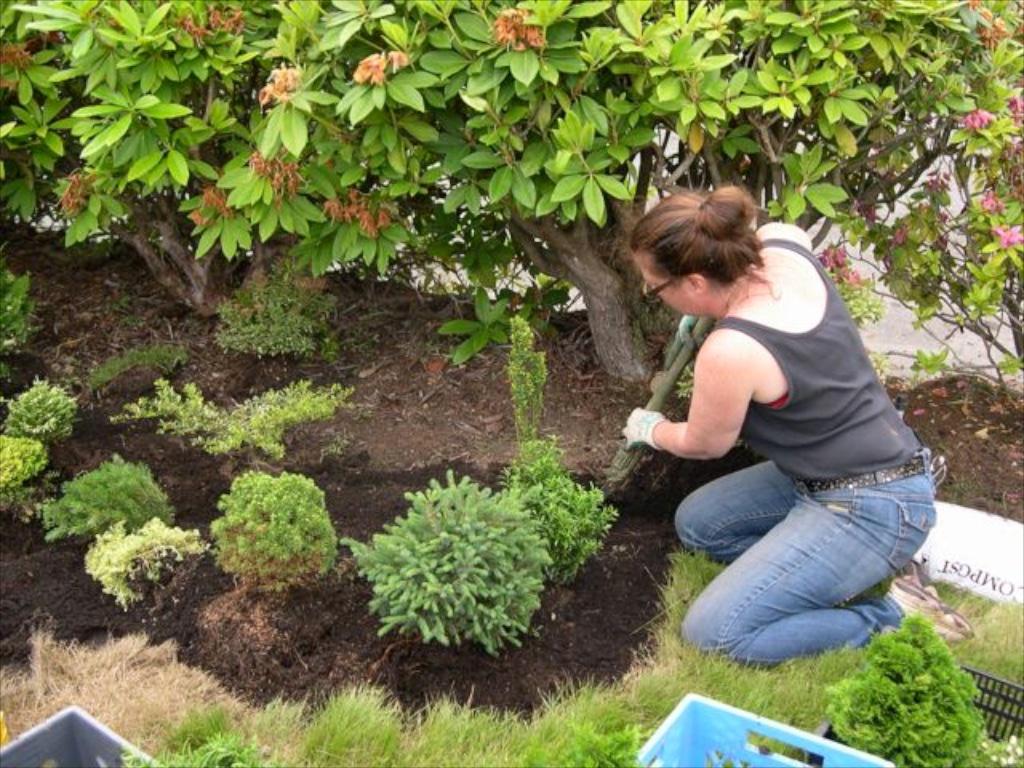 In-ground miniature gardening