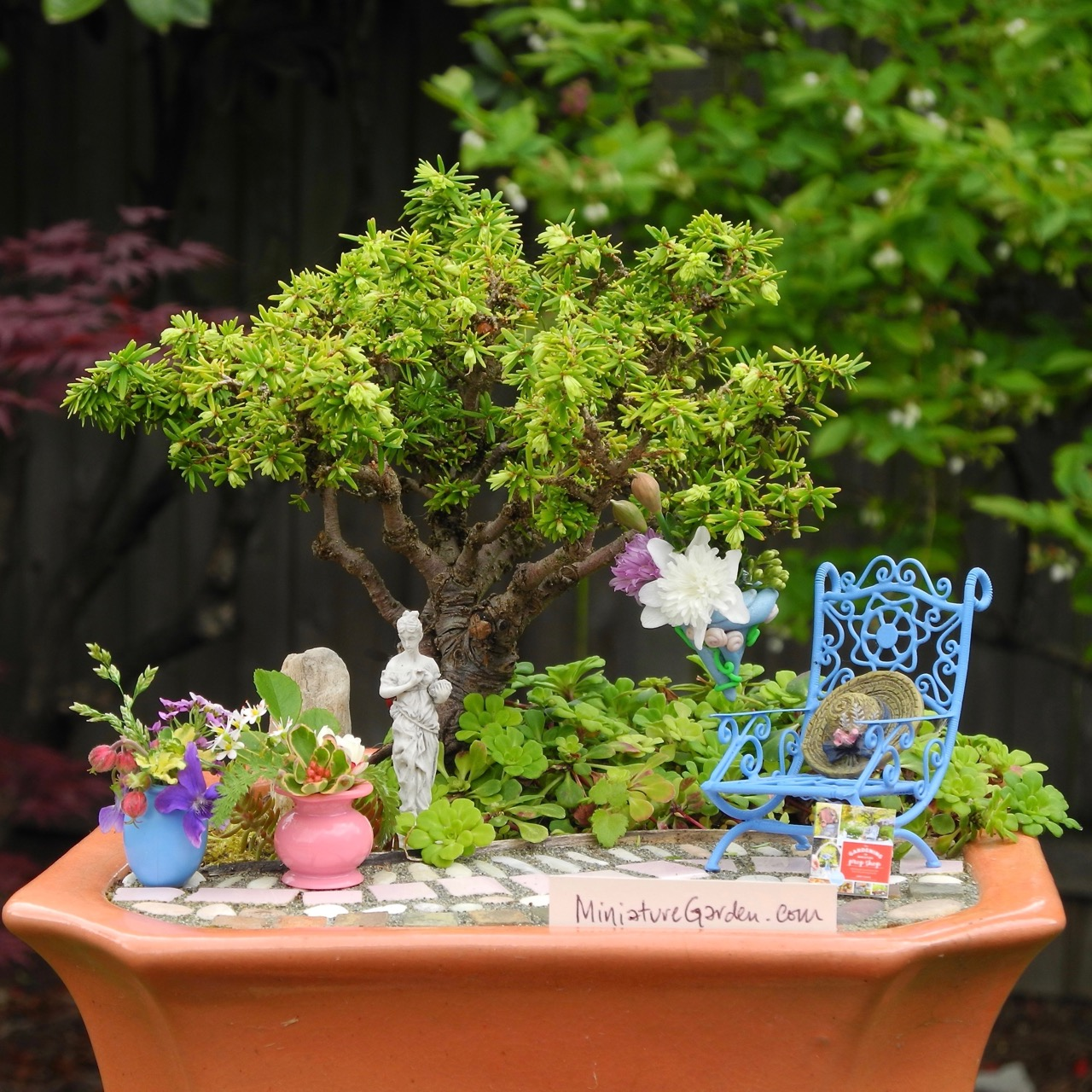 Miniature Gardening with Mom & MiniatureGarden.com