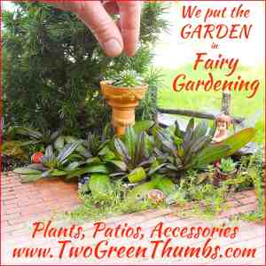 Fairy Gardening with Two Green Thumbs.com