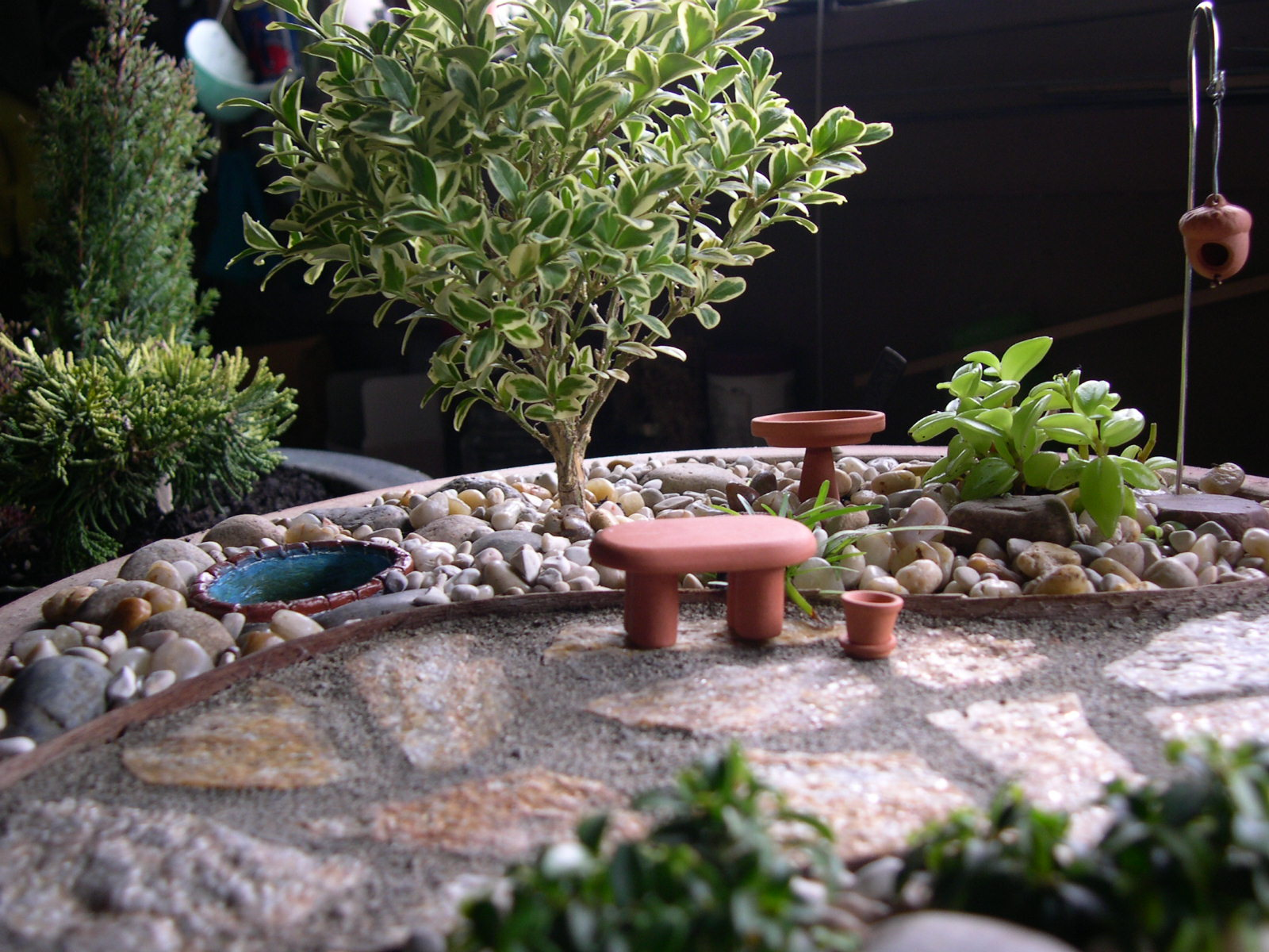 An indoor miniature garden that looks like the outdoors.