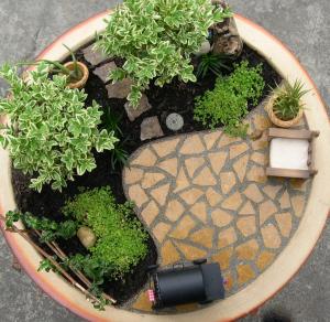 An indoor Miniature Garden