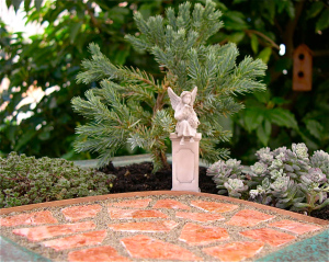 A Miniature Garden for dry, full-sun conditions.