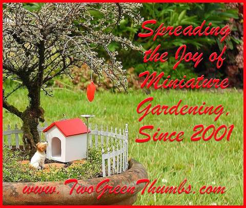 Shop Miniature Gardens with Two Green Thumbs