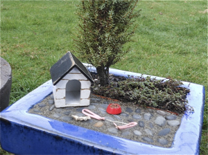 Miniature Garden with Doghouse.