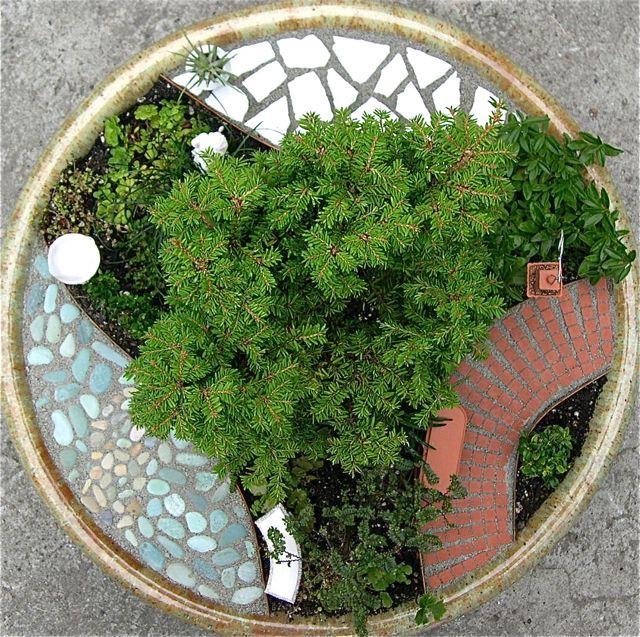 The versatile Miniature Patio Mix Kit for Miniature or Fairy Gardening